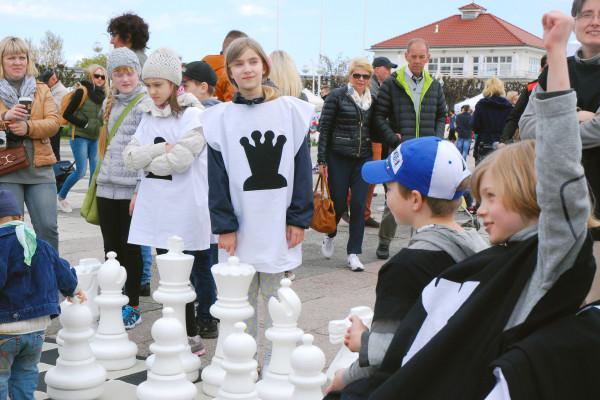 Gra w szachy - majówka